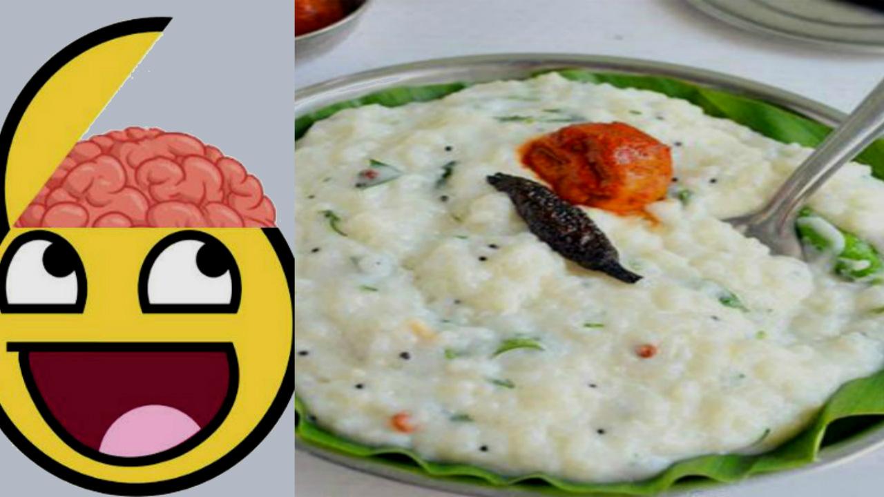 Science behind curd rice, ಮೊಸರನ್ನದ ಪ್ರಯೋಜನಗಳು ಒಂದಾ ಎರಡಾ! ಅಮೆರಿಕಾ ವಿಜ್ಞಾನ ಏನು ಹೇಳುತ್ತೆ?
