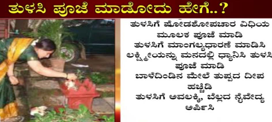 Significance of Tulasi puja, ತುಳಸಿ ಹಬ್ಬ ಆಚರಣೆಯ ಪ್ರಾಮುಖ್ಯತೆ ಏನು? ಶ್ರೀಮನ್ನಾರಾಯಣನ ಪಾತ್ರವೇನು?
